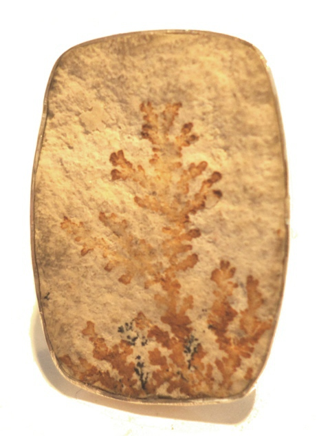 Fern Fossil ring